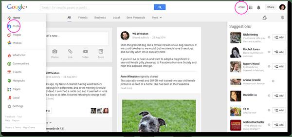 Google+ Profile page