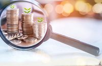Image of money with plants and magnifying glass