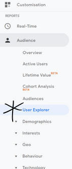 User Explorer in Google Analytics