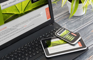 Image of mobile optimised website